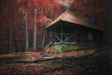 the witch's house... by edinaB