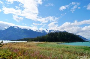 Haines by LydiaLingenfeld