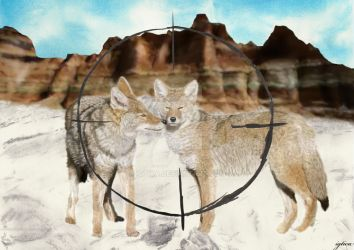 Realism collage - coyotes by igtica