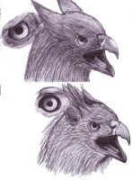 Gryphon Head Study by AngelicArt