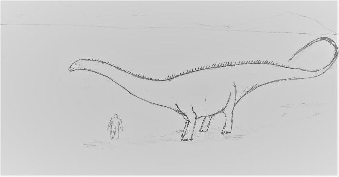 diplodocus by theropodrex