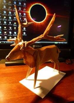 Rudolph the Roosevelt Elk by neubauten