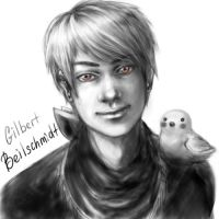 Prussia For Meme By Kiramaru7 by NonexistentWorld