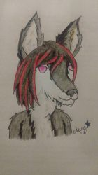 A friends fursona by AuraLeighDragon