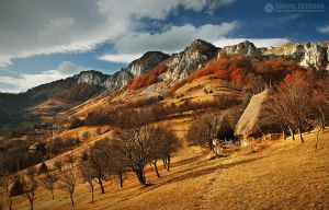 Autumn colors in Apuseni Mountains 33 by adypetrisor