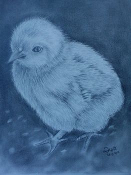 ... Just a Chick by DiptiArt