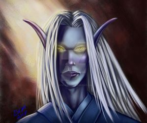 Character Portrat: Silmiron