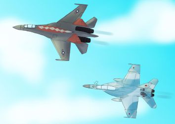 F-18 and Su-35 by Vizelius
