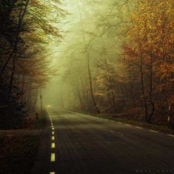 The Road by Oer-Wout