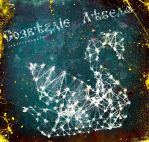 constellation swan CD cover by Ace0fredspades