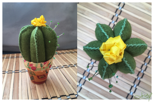 Cactus by Irsibil