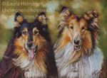 Collie Friends by Hei-La