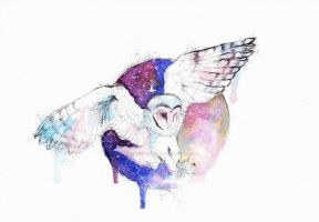 Owl and night by Blue-birch-insight