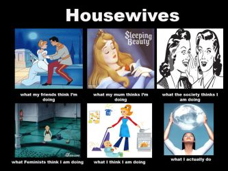 Housewives meme by PaLiLinz