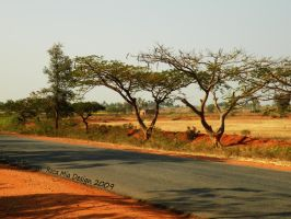 India Highway by Dreamz-of-Twilight