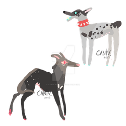 free dog adopts closed by caniv-adopts