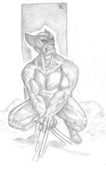 Wolvie pencils   100days 71 by OcioProduction