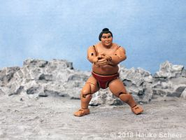 3D printed Sumo action figure pose L by hauke3000