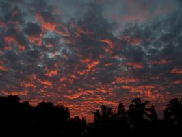 Fire in the Sky, Pukalani by bishop808