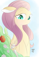 fluttershy by tohupo
