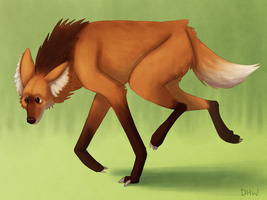 Maned Wolf by DragonHeartWolf