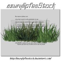 3D object - grass by AzurylipfesStock