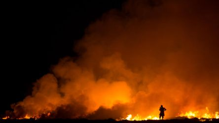 Farmer Field and Fire by ZaGHaMi