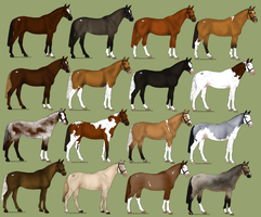 Equine Adoptables with Genetics by SnippleSnape