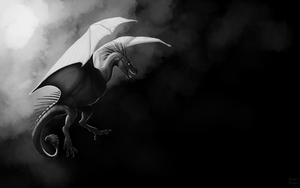 Black and White Wyvern by Scaleeth