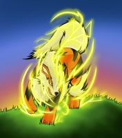 Pokemon contest: Arcanine used Wild Charge by DraginFyr