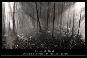 Imposible light by Floriandra