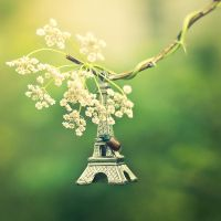 who loves Paris? by StopScreamGraphy