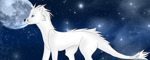 The Stars...In the Night. by Bella181