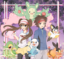 .Pokemon BW 2.