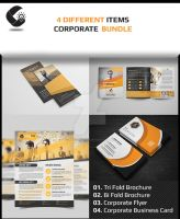 Corporate Bundle item for print by Cristalpioneer