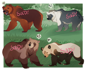 Bear Adoptables 3 [SOLD] by Machati