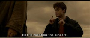 Harry Potter gif by rumper1