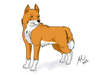 Ginger Fox by AmyNoelly
