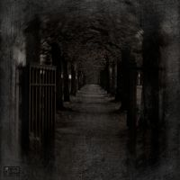 The last path by Baron-of-Darkness