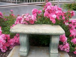 Garden bench by NeverlandStock
