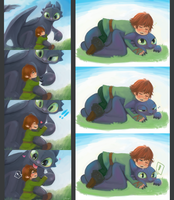 Hiccup and Toothless by hiraco