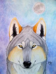 Keeper of the Moon. by DanyWolf