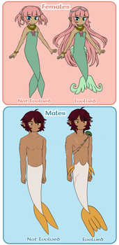 Unevolved Vs. Evolved Siren Guide by Icy-Snowflakes