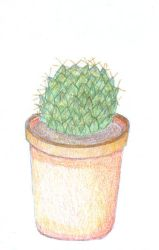 Cactus in pot by MichaFire