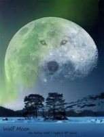 wolf on the moon by cottoncandy123