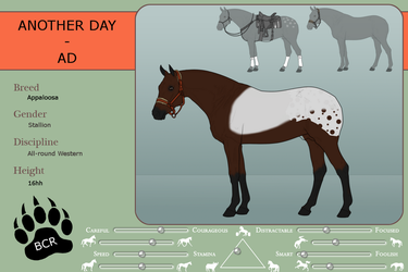 Ref sheet - Another Day by MammothEquine71