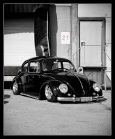 Beetle 21 by Andso