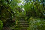 Stairs to nowhere by zerplon