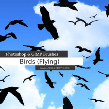 Birds Flying Photoshop and GIMP Brushes by redheadstock