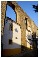 Evora Old Houses II by FilipaGrilo